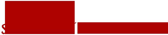 Logo Stoff Bielefeld